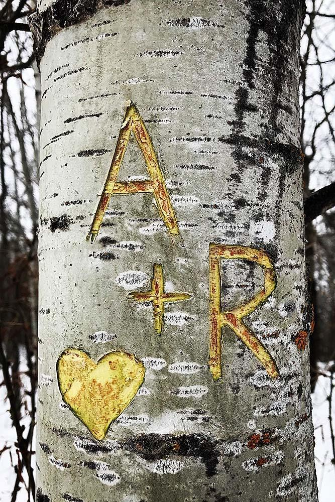romantic ways to propose tree carving proposal