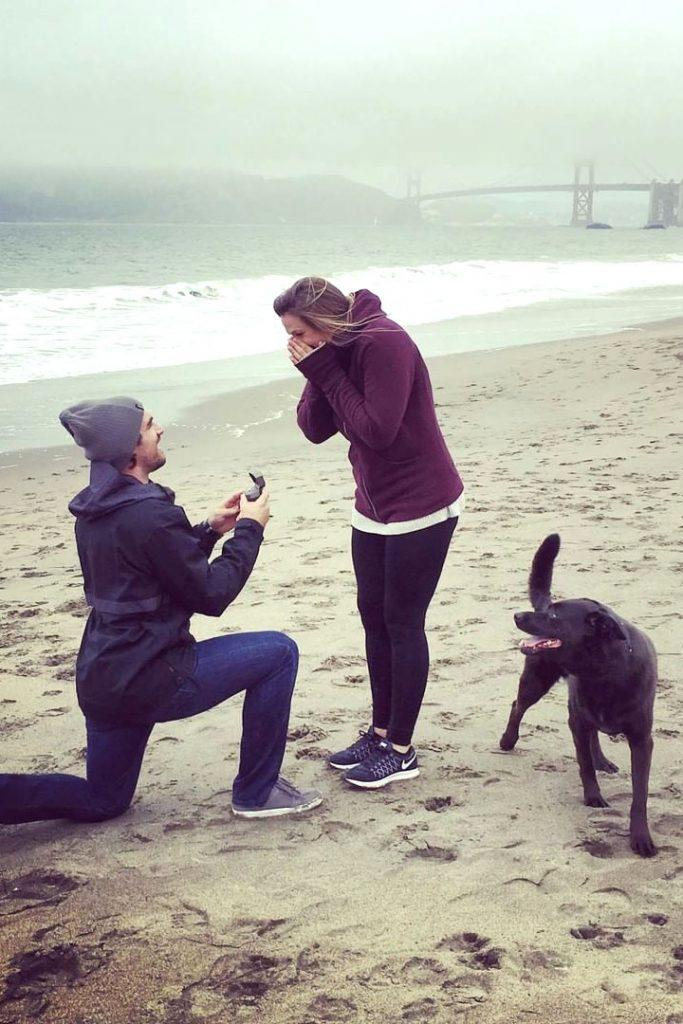beach proposal ideas walking beach proposing with pet