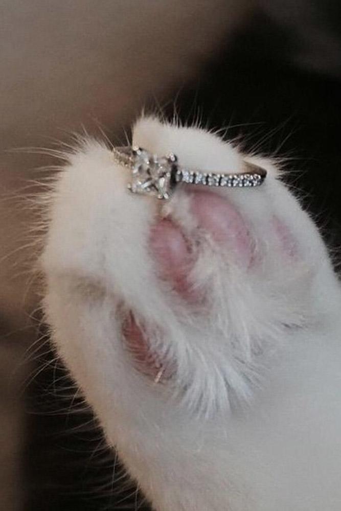 ritani engagement rings princess cut simple diamond pave band