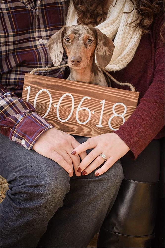 save the date ideas dog cute engaged couple