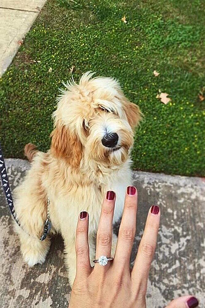 engagement photos dog cute engagement ring