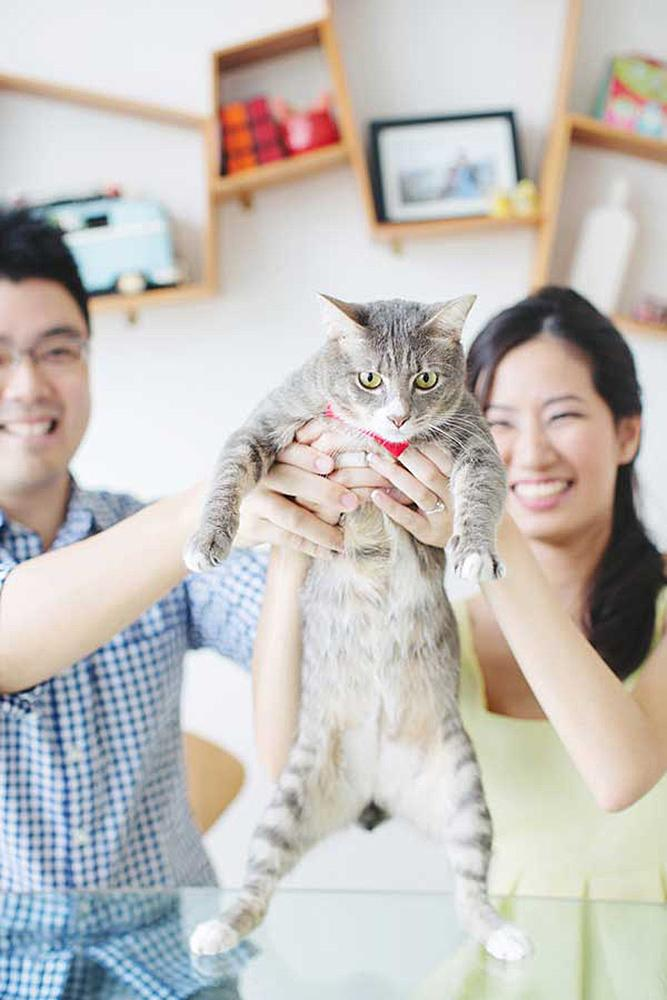 engagement pictures with pets cat with happy couple