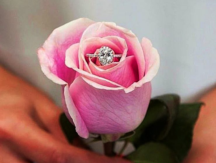 custom engagement rings rose pave band halo diamond coastdiamondjewelry featured