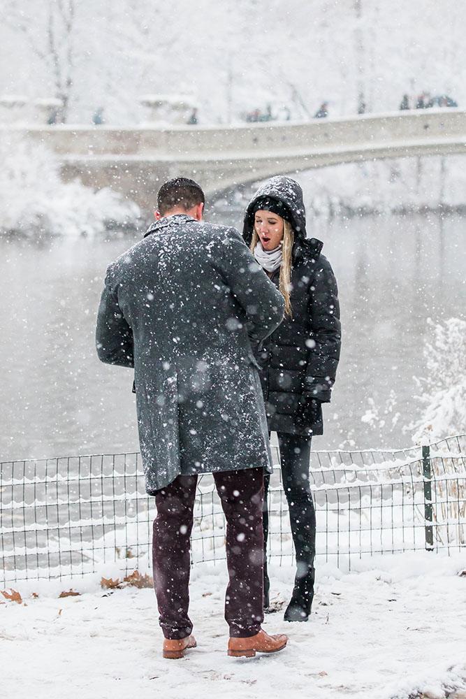 Britt and Elliott real proposal