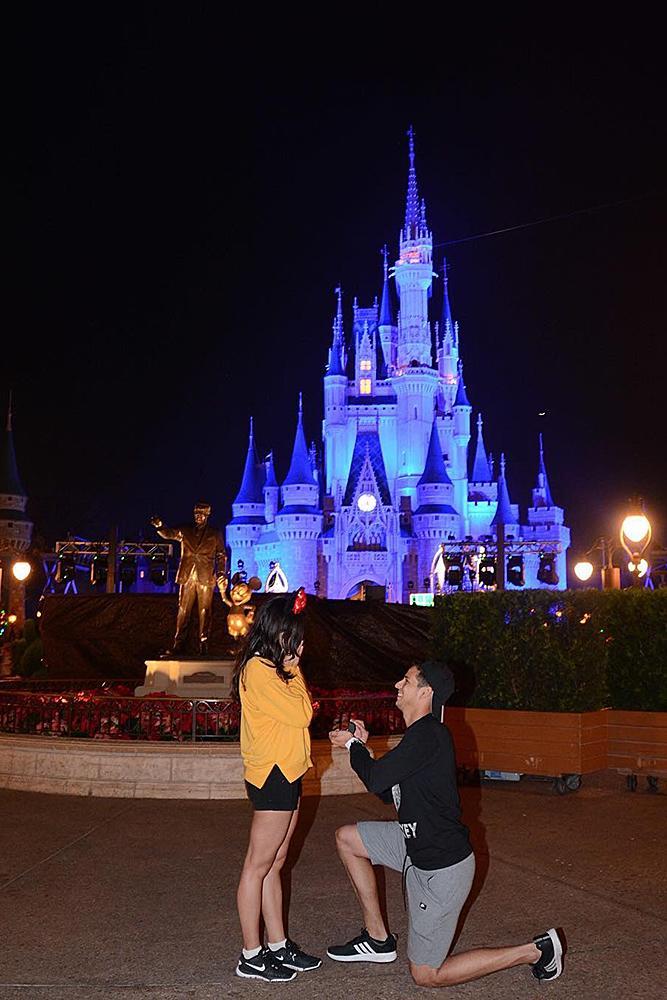 Disney proposal ideas night time propose