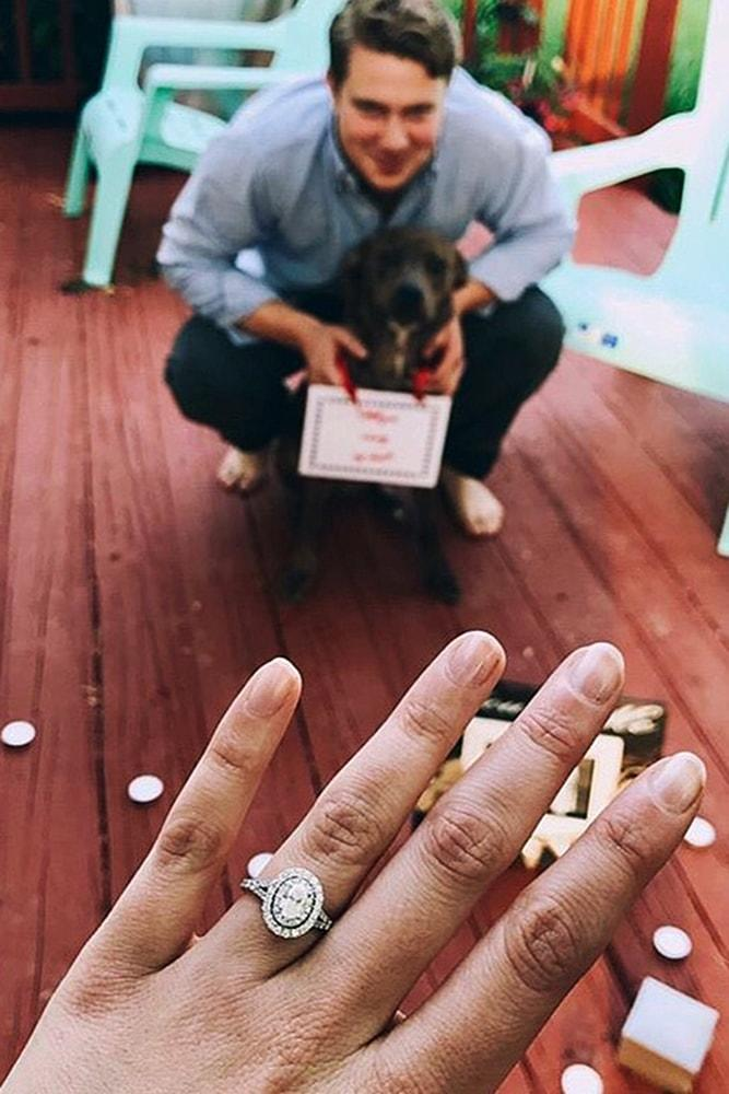 proposals cute proposals with pets sparkling ring