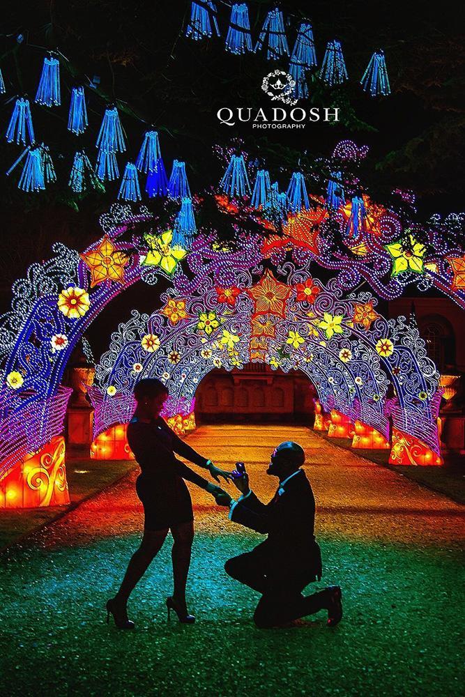 perfect proposals amaizing proposal ideas for inspiration color lights