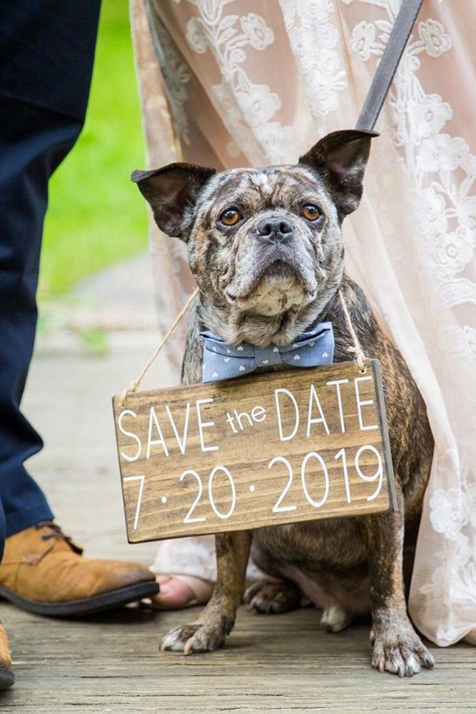 save the date ideas proposal ideas engagement photos best save the date ideas romantic proposals